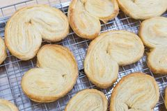 Closeupfjärilspaj eller mer palmier kaka-, sötsak- och efterrättconce fotografering för bildbyråer