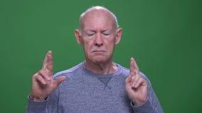 Closeupfors av den gamla h?ga caucasian mannen som har hans fingrar att korsas med hopp som ser kameran med bakgrund stock video