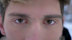 Closeupfors av den unga attraktiva caucasian manliga framsidan med bruna ögon som ser kameran i begrundande lager videofilmer