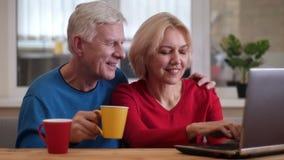 Closeupfors av höga lyckliga par som knyter kontakt på bärbara datorn på skrivbordet och inomhus dricker kaffe i en slags tvåsitt arkivfilmer