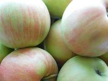 Closeupfoto av äpplen Royaltyfria Foton