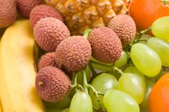 closeupfrukter arkivfoton
