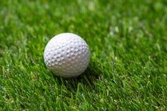 Closeupgolfboll på gräs arkivbilder