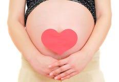 closeuphjärta som rymmer den gravida röda kvinnan Arkivfoto