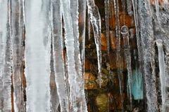 Closeupistappar, abstrakt gammal bakgrund för tegelstenvägg med sprickais, mossa och filialer av buskar, istappar, isför mycket p Arkivfoton