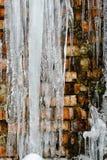 Closeupistappar, ispackar och istappar, abstrakt gammal bakgrund för tegelstenvägg med sprickais, mossa och filialer av buskar Royaltyfria Foton