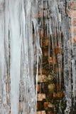 Closeupistappar, ispackar och istappar, abstrakt gammal bakgrund för tegelstenvägg med sprickais, mossa och filialer av buskar, u Arkivbild