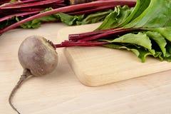 Closeupsikt av charden, sidor och rödbetor på soppa på skärbräda Arkivbild