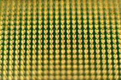 Closeupsikt av guld- mikroprocessorben Royaltyfri Foto