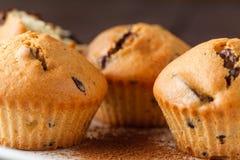 Closeupsikt av nya drog tillbaka muffin Royaltyfri Foto
