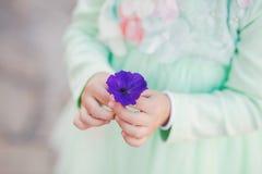 Closeupsikt av små gulliga händer av lilla flickan Royaltyfri Fotografi