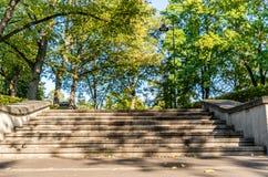 Closeupsikten av konkret trappa parkerar in i Sunny Autumn Day With Golden Leaves i träd, Lettland, Europa, begrepp av att koppla arkivbild