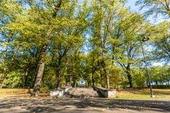 Closeupsikten av konkret trappa parkerar in i Sunny Autumn Day With Golden Leaves i träd, Lettland, Europa, begrepp av att koppla arkivbilder