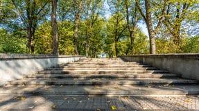 Closeupsikten av konkret trappa parkerar in i Sunny Autumn Day With Golden Leaves i träd, Lettland, Europa, begrepp av att koppla arkivfoto