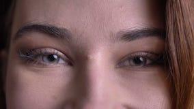 Closeupstående av den unga härliga caucasianen fem, ölframsida med blåa ögon som ser raka på kameran med att le ansiktsbehandling arkivfilmer