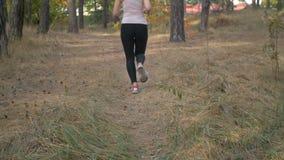Closeupsteadicam sköt av kvinnlig fot i gymnastikskor som kör i skog