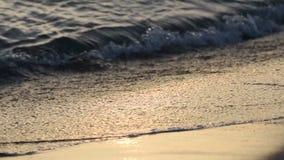 Closeupstillhetvågor av havet på Sandy Beach på solnedgången Solreflexion i havsvatten mot bakgrund field blåa oklarheter för grö stock video