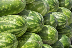 Closeview of stacked watermelon Stock Image