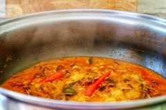 The closing up and soft focusing picture of steam. And Gaengkua`s pot, a kind of Thai dish, featuring coconut milk, mussels, Thai herbs, and chillies Stock Photography