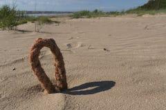 Closu-επάνω του βρόχου του σχοινιού στην παραλία στοκ εικόνες