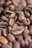 Closup dos feijões de café foto de stock