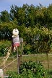 A cloth faced scarecrow Stock Image