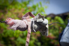 Cloth tied on a wire Stock Image