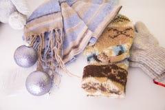 Clother do inverno Imagens de Stock Royalty Free
