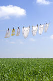 Clothes drying Stock Images