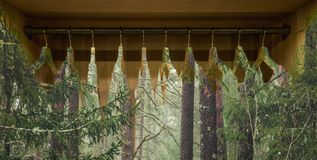 Clothes hanger with dresses in the forest. Concept for organic clothes, closet and sustainable fashion royalty free stock photography