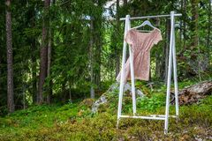 Clothes hanger with a pink dress in the forest. stock image