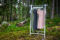 Free Clothes Hanger With Dresses In The Woods. Stock Image - 125600291