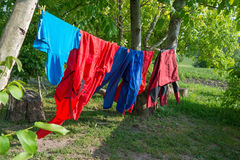 Clothes hanging on line in garden Royalty Free Stock Image