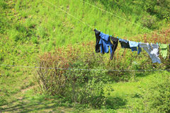 Clothes hanging to dry on a laundry line Stock Image