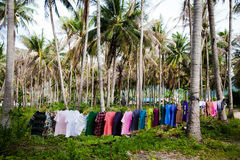 Clothes in the jungle Royalty Free Stock Photos