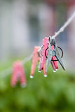 Clothes peg Royalty Free Stock Photography