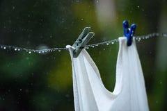 Clothes peg close up. Wet clothes peg close up during summer rain stock image