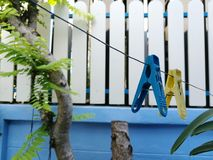 Clothes peg. Color of clothes peg royalty free stock images