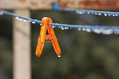 Clothes peg with water drops after rain Stock Images