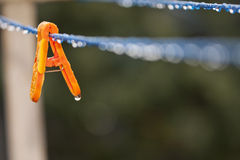 Clothes peg with water drops after rain Stock Photos