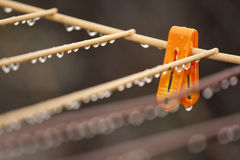 Clothes peg with water drops after rain Royalty Free Stock Images