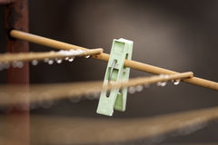 Clothes peg with water drops after rain Stock Photography