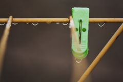 Clothes peg with water drops after rain Royalty Free Stock Image