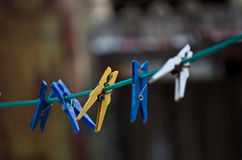 Clothes peg Stock Image