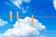 Clothes Pegs. On washing line against a summer blue sky with flying birds Royalty Free Stock Image