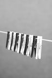 Clothes Pegs. A row of black and white clothes pegs on a line with a grey background Stock Photography
