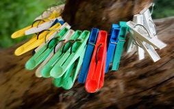 Clothes-pegs on branch Royalty Free Stock Image