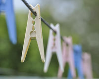 Clothes Pegs. Coloured clothes pegs, or clothes pins, hanging from a clothes line Stock Photography