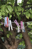 Clothes pegs hanged on rope at garden Stock Images