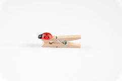 Clothes pegs Stock Images